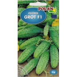 PL Ogórek gruntowy typ korniszon Grot 3g
