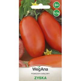 WEG Pomidor karłowy Zyska typu pelati 0,5g