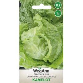WER Sałata krucha Kamelot 1g do uprawy całosezonowej