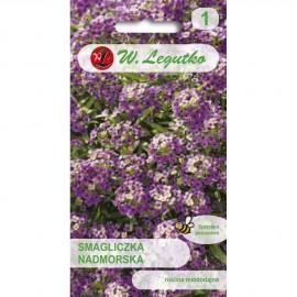 LG Smagliczka nadmorska fiolet 0.5g