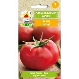 TORAF Pomidor wielkoowocowy późny Ikarus 0,5g