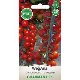 WEG Pomidor pod osłony Charmant F1 20szt PROFI