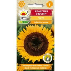 TORAF Słonecznik ozdobny na kwiat cięty Taiyo 2g