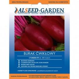 ALSEED Burak Cylindra ok 500szt nasiona profesjonalne