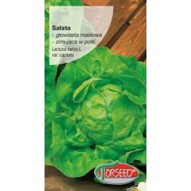 Torseed sałata Zina zimująca 0,5g
